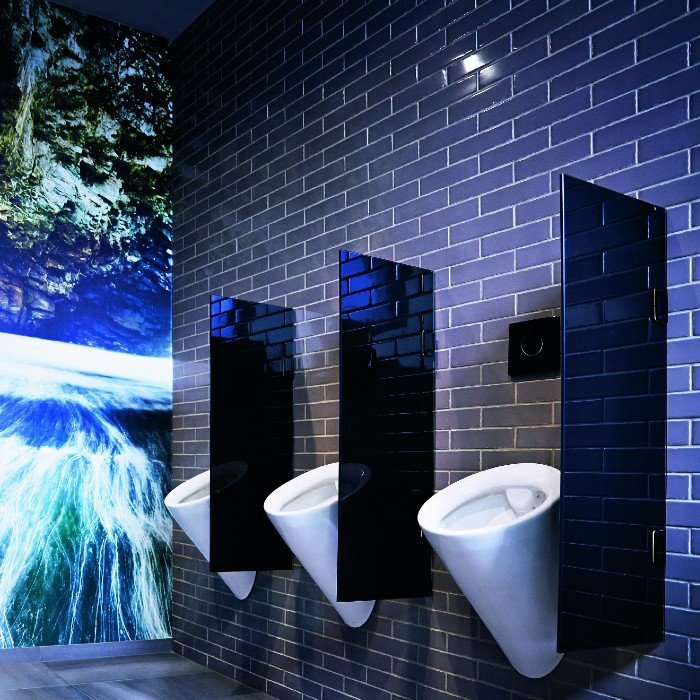 Urinaleinlagen
